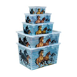 Qutu 5'li Horses Light Box Kutu