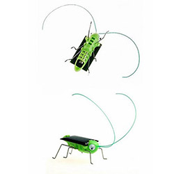 Patrix Solar Robot Böcek (1 Alana 1 Bedava)