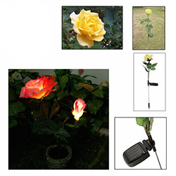 Patrix Dekoratif Gül Solar Bahçe Lambası