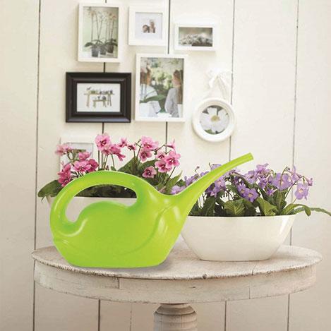 Patrix Kuğu Çiçek Sulama Kabı - Asorti