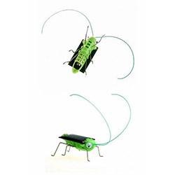 Patrix Solar Robot Böcek
