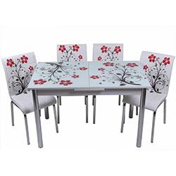 Kristal TK-59/4 Yemek Masası Takımı (4 Sandalyeli) - Kırmızı Dallı