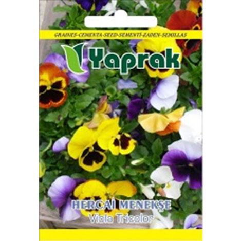 Resim  Yaprak Hercai Menekşe Çiçeği Tohumu