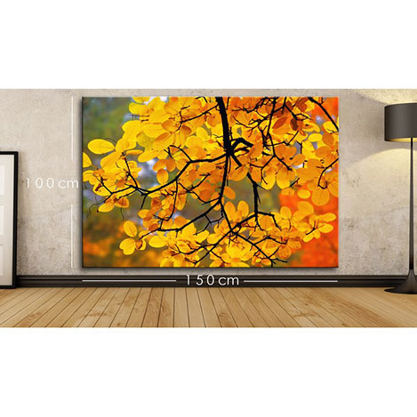 Modacanvas BXX8 Kanvas Tablo - 150x100 cm