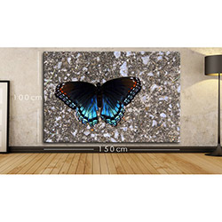 Modacanvas BXX10 Kanvas Tablo - 150x100 cm