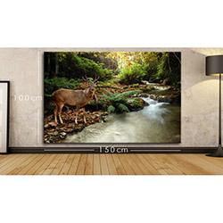 Modacanvas BXX37 Kanvas Tablo - 150x100 cm