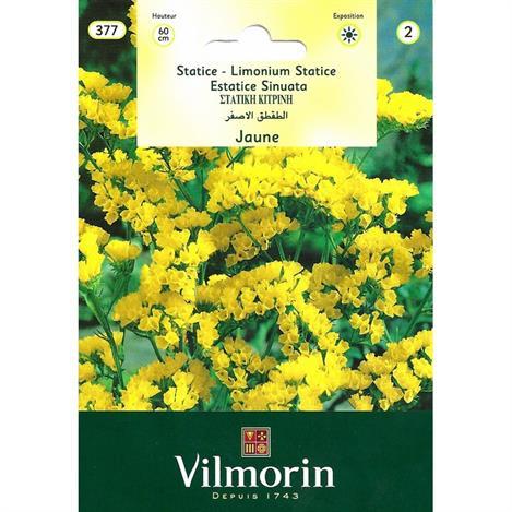 Vilmorin Sarı Kuduz Otu Çiçeği Tohumu