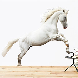 Supersticx Dew43 Beyaz At Duvar Sticker - 130x120 cm