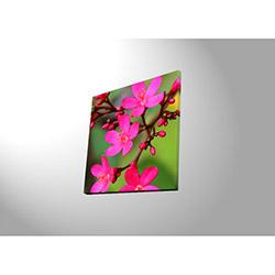 Özgül 4040DACT-40 Aydınlatmalı Kanvas Tablo - 40x40 cm