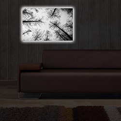 Özgül 4570DACT-65 Aydınlatmalı Kanvas Tablo - 45x70 cm