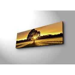 Özgül 3090DACT-68 Aydınlatmalı Kanvas Tablo - 30x90 cm