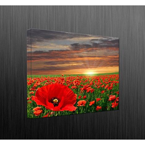 Duvar Tasarım DLC6046 Led Işıklı Kanvas Tablo - 60x40 cm