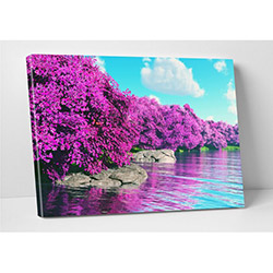 Modacanvas FDC190 Kanvas Tablo - 70x100 cm