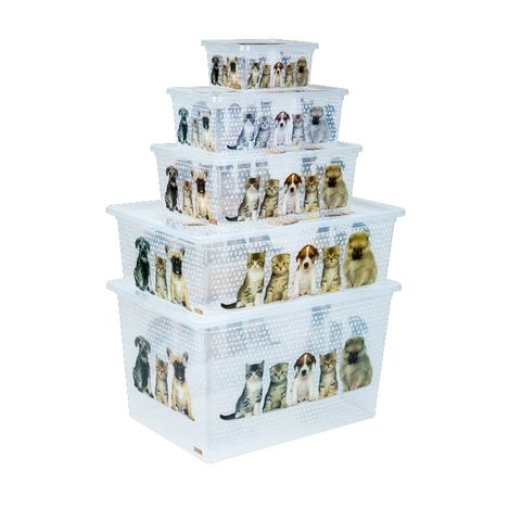 Qutu Lıght Box Cats And Dogs 5'Li Kutu