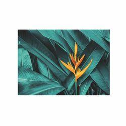 Doku Tablo CİGE-2440 Çiçek-3 Kanvas Tablo