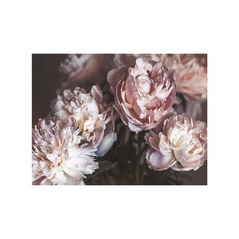 Doku Tablo CİGE-5611 Çiçek-11 Kanvas Tablo