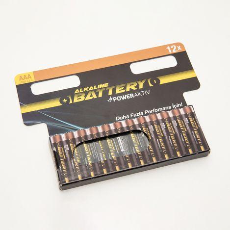 PowerAktiv12'li  AAA Boy Paket Pil