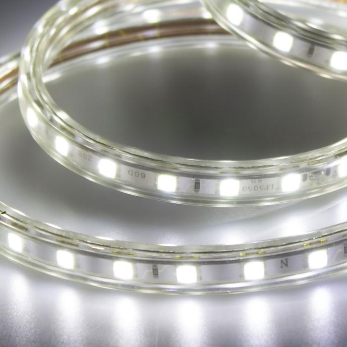Petrix BSA Led Şerit 5M 6500K Su Geçirmez Beyaz Işık