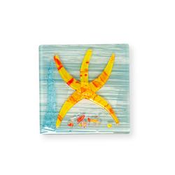 Füzyon Deniz Yıldızı Gider Süsü (Asorti) - 10x10 cm