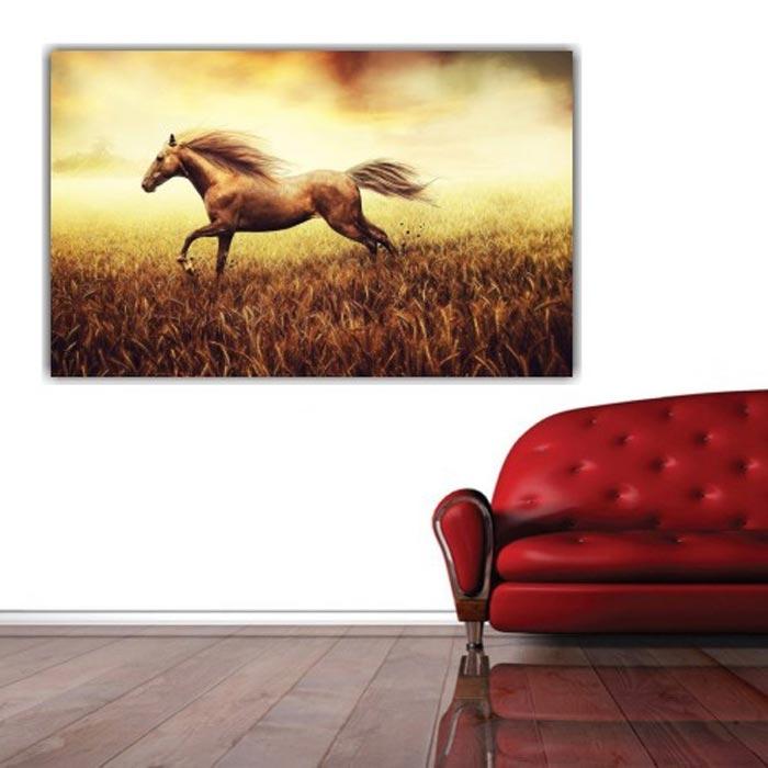 Resim  Doku Tablo Canvas DC129 Tablo - 50x70 cm