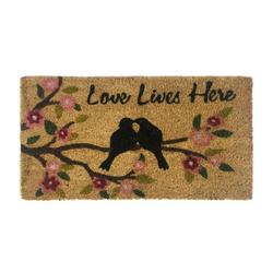 Giz Home Love Kuşlar Kapı Paspası - 33x60 cm