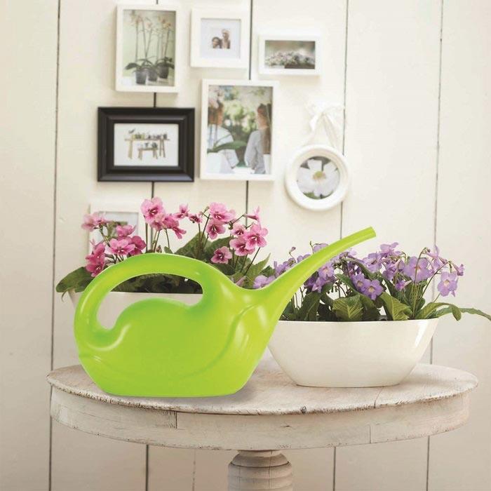 Resim  Patrix Kuğu Çiçek Sulama Kabı - Asorti