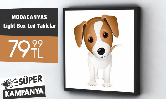 Modacanvas Light Box Led Tablolar 79,99 TL